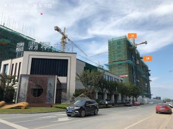 2019年7月工程进度