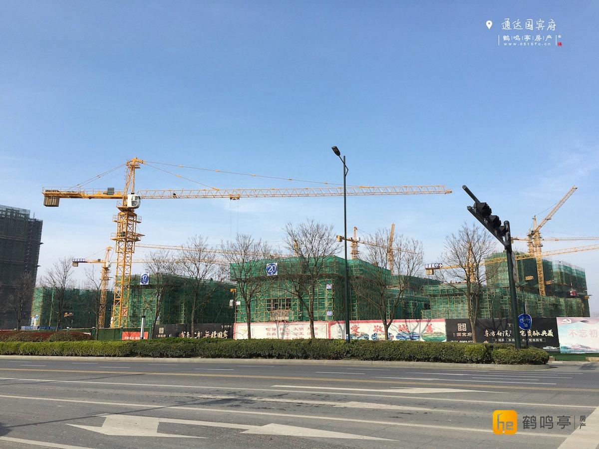 3月通达国宾府工程建设进度图