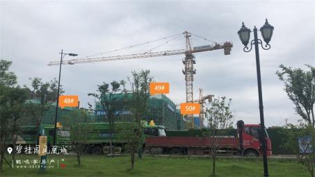 2020年6月工程进度图