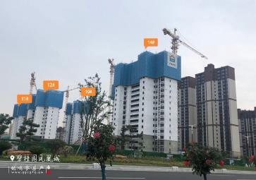 碧桂园凤凰城7月工程进度